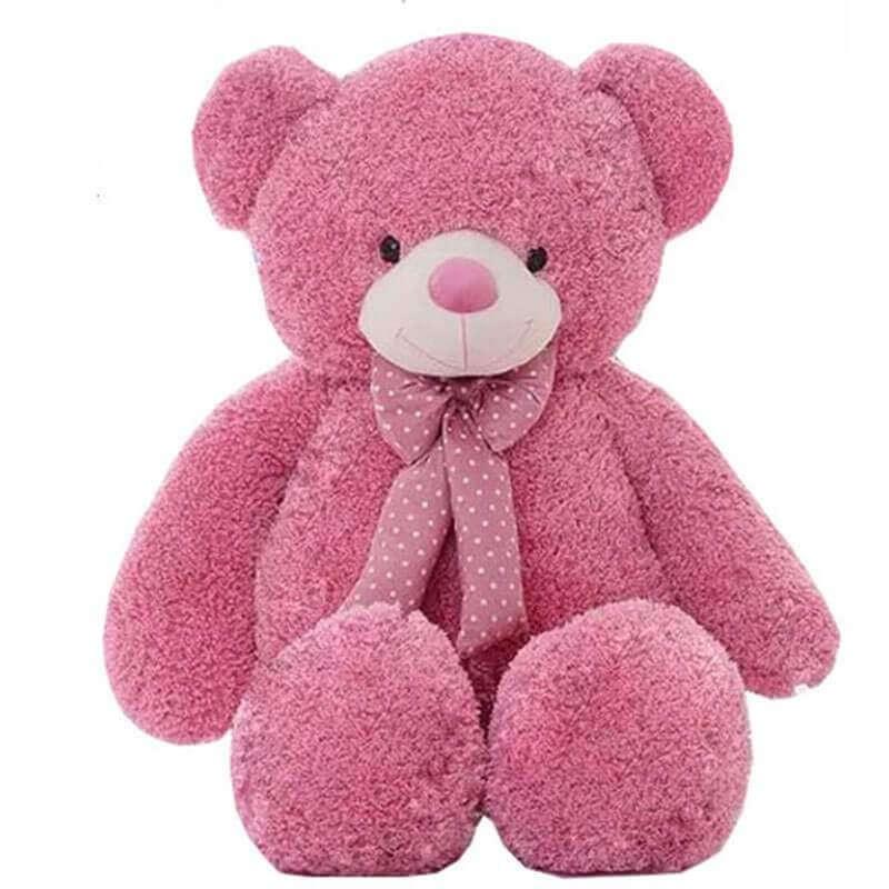 Big pink Teddy