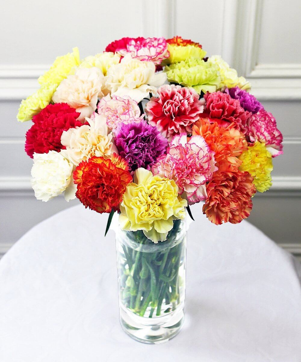 Bouquet Of Mix Carnations Flowers
