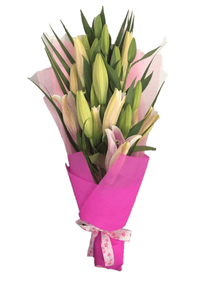 Pretty Pink Lily - Valentine's Special