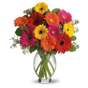 Gerberas Flowers Arrangements