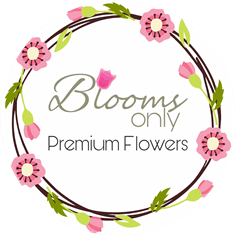 bloomsonly.com